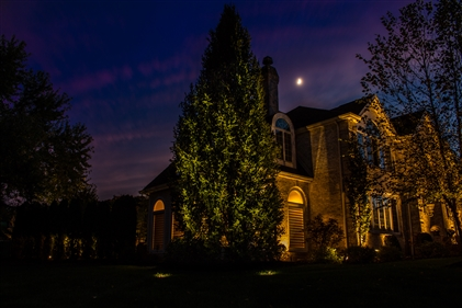 View larger photo of: Pittstown NJ Outdoor tree lighting