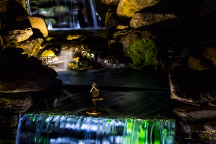 View larger photo of: Waterfall lighting NJ Installation
