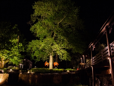 View larger photo of: Landscape Garden Lights NJ