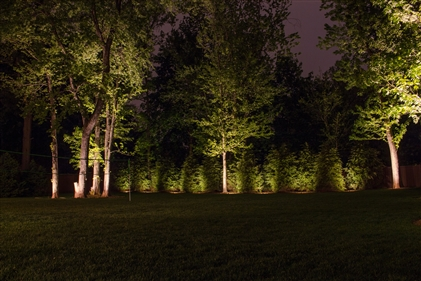 View larger photo of: Living wall Tenafly NJ Lighting Outdoor