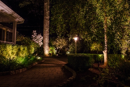 View larger photo of: Walkway lighting landscape lighting New Jersey